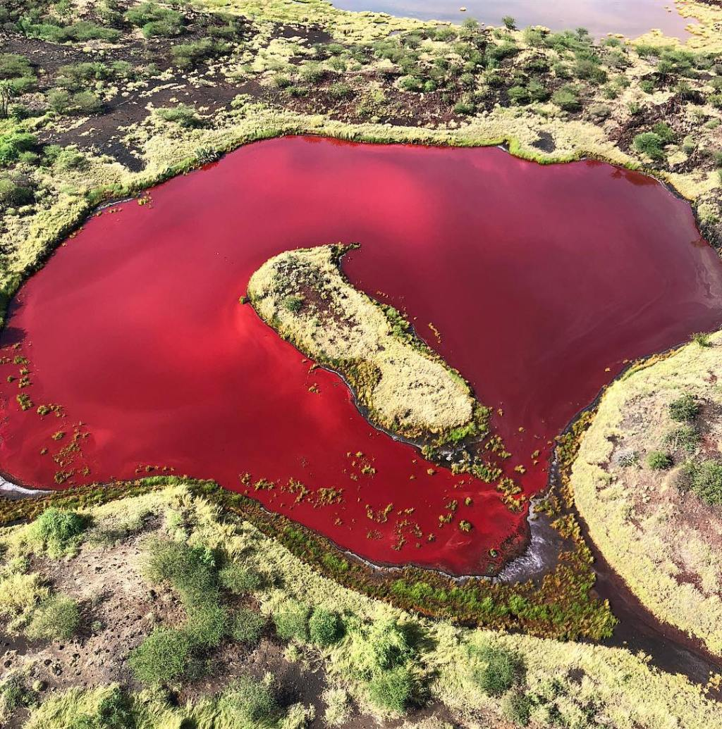 Blood Red in Turkana details