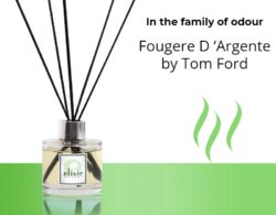 Fougere D 'Argente by Tom Ford