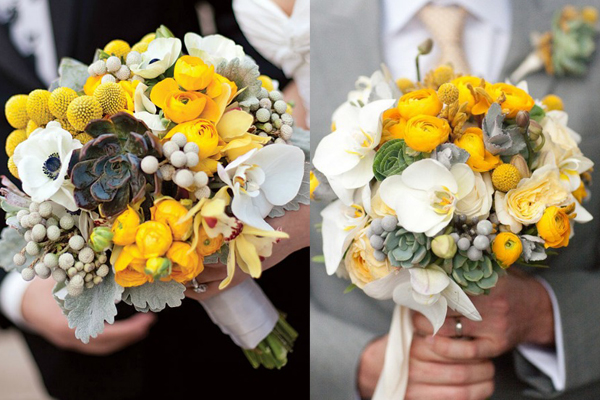 Friday Flowers: Silver Brunia