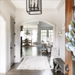 wide foyer , colonnade grey , interior decor
