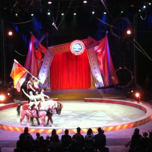 The Day The Circus Came To Town The Story Of Our Lives