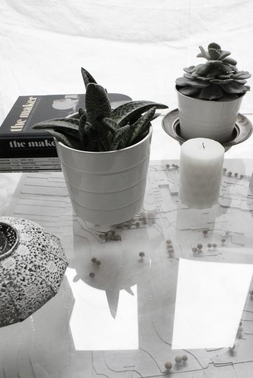 Coffee table styling at EDIT - elizabethdanon.co.uk