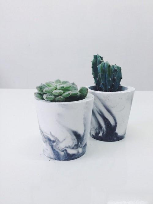 plants, marble, interiors