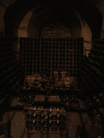 Bottles of champagne almost 200 years old! (sorry the photo is so dark!)
