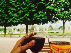 Wine in Tuileries Garden in Paris
