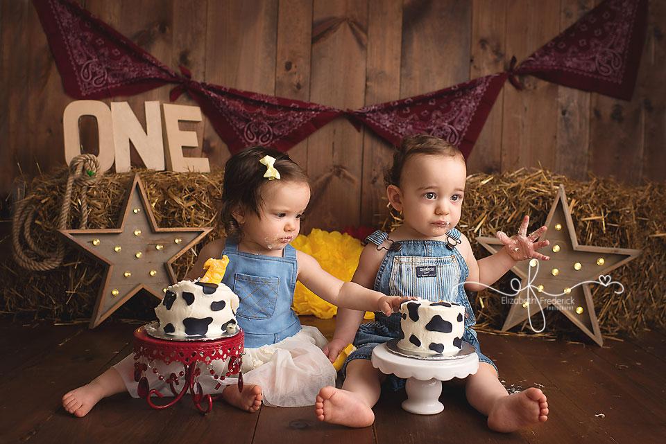 Farm Themed Smash Cake Photography Session | Twin Smash Cake Session | Farm First Birthday Idea | Smash Cake Photography Ideas | CT Smash Cake Photographer ELizabeth Frederick Photography www.elizabethfrederickphotography.com