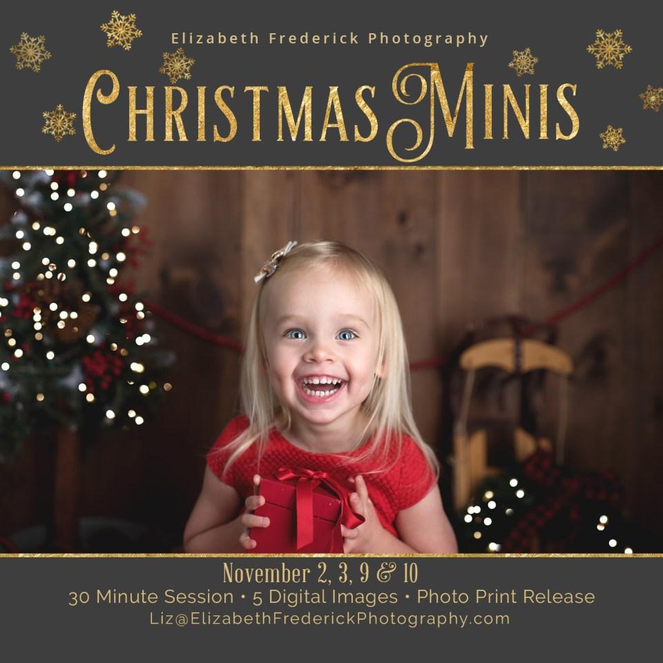 2018 Holiday Mini Sessions | CT Mini Session Photographer | Holiday Photos | Christmas Mini Sessions | CT Christmas Mini Session Photographer