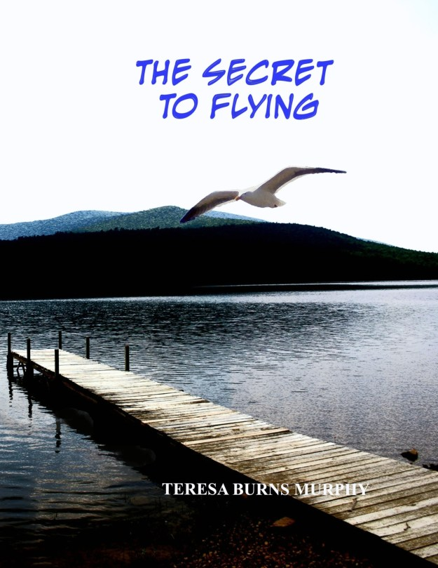 Book cover for the Secret to Flying
