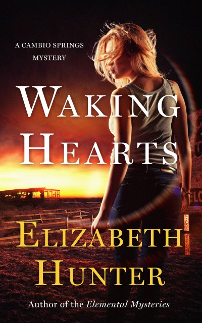 Waking Hearts - Ebook Small