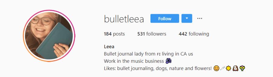 July Bullet Journal Feature   BulletLeea