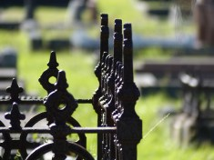 Chapter 6: Many of the graves had very low stone walls topped with ornate metal fences that had rusted over the decades. A number of fallen fences lay scattered on the ground. Caroline had simply heard one grate against stone as it fell.