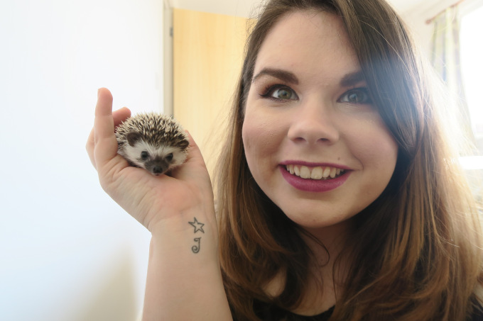 Meet Penny – Our African pygmy hedgehog