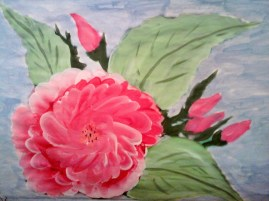 Pink Rose-watercolor on paper