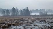 Deer Lake Park Winter 3