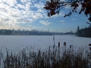 Deer Lake Park Winter 4