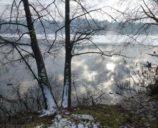Deer Lake Park Winter 7