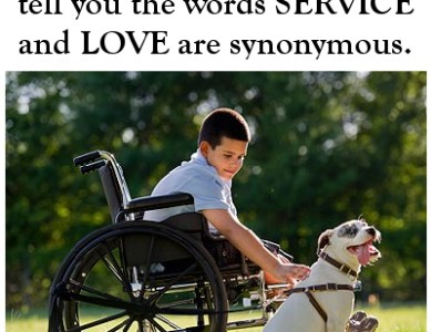 Dog Lesson 5: LOVE and SERVICE