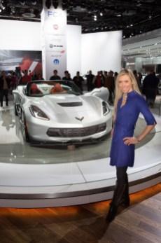 Auto Show 2015-341