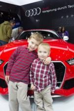 Auto Show 2015-375