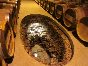 Cutaway in cellar floor to show underground stream at Vignobles des VerdotsVerdots