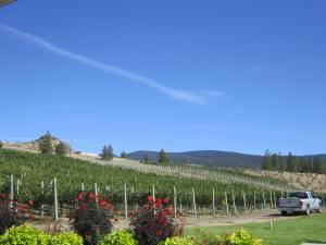Meyer Family Vineyards, Okanagan Falls, BC