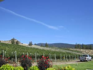 Meyer Family Vineyards, Okanagan Falls, BC