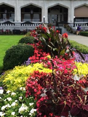 Beautiful garden displays in Victoria
