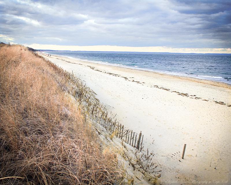 Sandy Neck Beach, Cape Cod  Elizabeth Thomas Photography