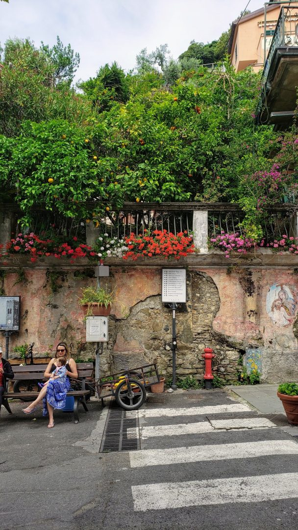 flores em Monterrosso al mare, Cinque Terre