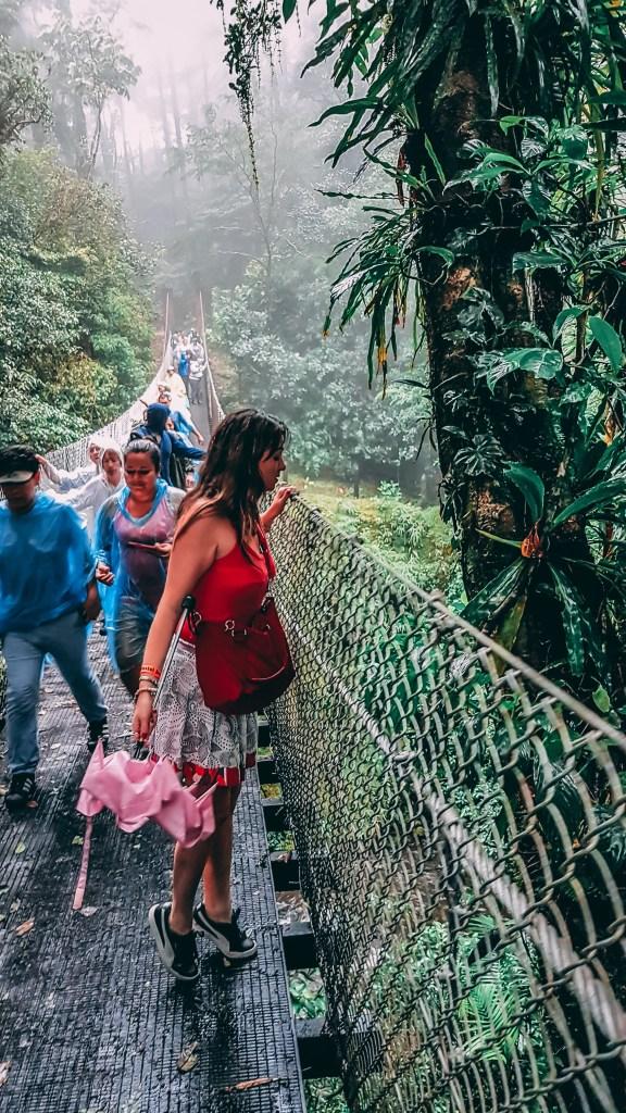 pontes suspensas super bonitas que eu sempre via em filmes de aventura. Essas pontes são excelentes para observar a floresta de uma forma mais natural. Roteiro pela Costa Rica