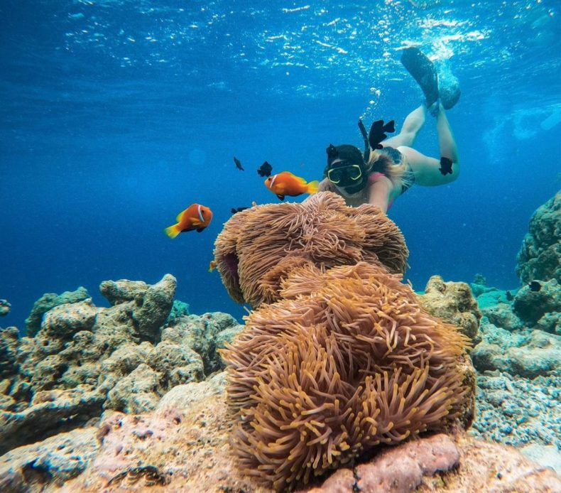 Andressa Rirsch mergulhando nas Maldivas