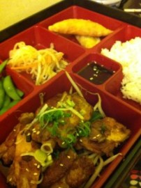 Dotori Japanese Food Bento Box