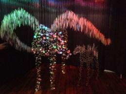 Amazing, shimmering horses!