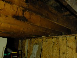 But, hey, look at those awesome joists!