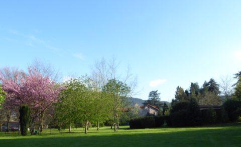 """""""Primavera Cántabra"""" en el Jardín de Carrejo"""