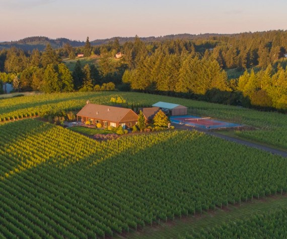 Clay Court Vineyard aerial photo at dawn
