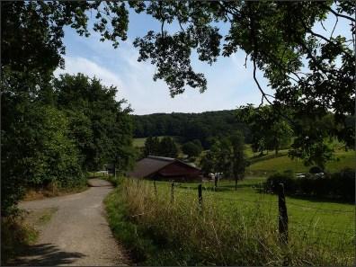 Felderbachtal (11)