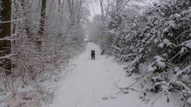 2015 01 24_Homezone im Schnee_0021