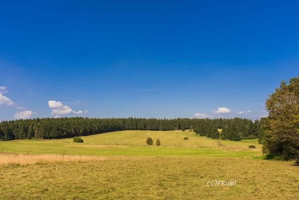 fuchskaute_erlebnisschleife_westerwald-271