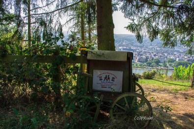 rheinsteig_rodenbach_leutesdorf-109