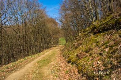 KirchwaldPanoramaweg (173)