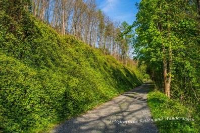 LZ01_LZ02_Rheinsteig-(91)-Bearbeitet