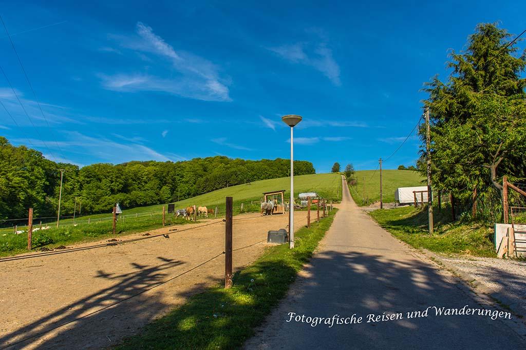 Rundweg-Klasmühle (4)