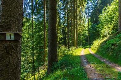 Sechs-Eichenrunde-Raßberg (111)