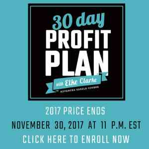 30 Day Profit Plan with Elke Clarke Million Dollar Zazzle Earner