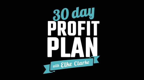 The 30 Day Profit Plan with Elke Clarke, Top Zazzle Earner. An online course and mentoring program that shows you how to make a profit on Zazzle.