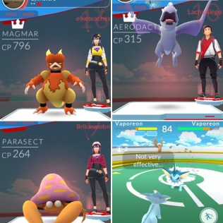 My kids & I own the local PokemonGO gym
