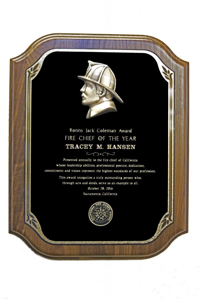 2016-fire-chief-award