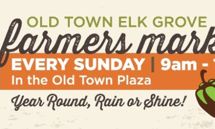 Sunday Farmers Market in Old Town