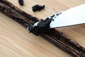 Vanilla is Vanilla, or is it?